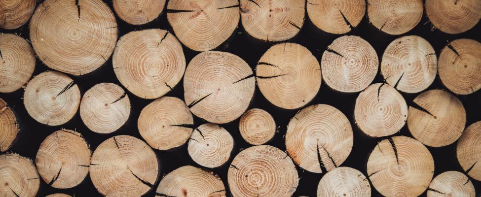 PEFC Metsamajandamise sertifikaadid