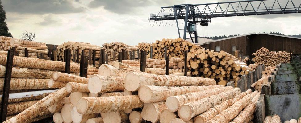 EUTR Euroopa Liidu puidumäärus