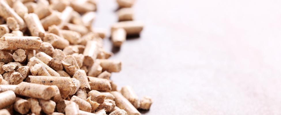 Säästva biomassi programm (SBP)