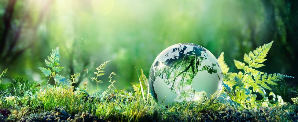 ISCC Rahvusvaheline jätkusuutlikkuse ja süsinikdioksiidi sertifitseerimine